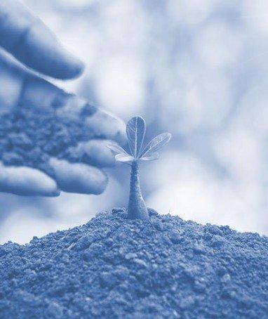 Almanaque da Sustentabilidade